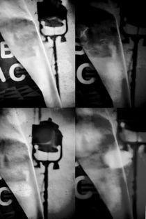 Dunkle Lichter  von Bastian  Kienitz