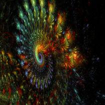 Diagonal Spiral von Elisabeth  Lucas