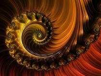 Copper Whirl von Elisabeth  Lucas