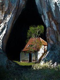 Casa con árbol von Ricardo De Luca