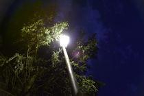 Lantern at Night von Timo Gräf