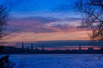 Hamburger Skyline zur Blauen Stunde von Thomas Sonntag