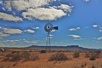 Wind Punk Quiver Namaqualand by crismanart
