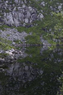 Bergsee von ysanne