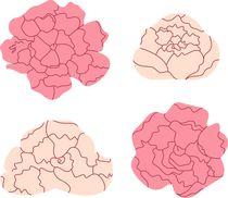 Wellness pink  Roses by Jana Guothova
