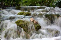 belebendes Wasser von Bettina Schnittert