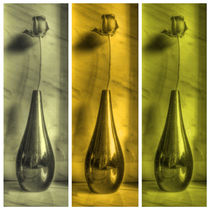 Rose Triptych in Yellow by Colin Metcalf