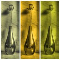 Rose Triptych in Yellow von Colin Metcalf