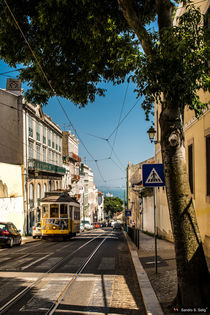 in the streets of Lisbon by Sandro S. Selig
