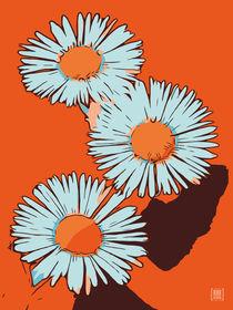Blumen Poster Gänseblümchen orange von Robert H. Biedermann