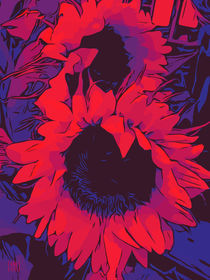 "Blumen Poster ""Two red Sunflowers"" von Robert H. Biedermann"