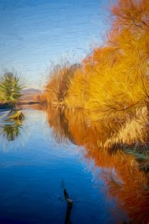Winter Sun on the Aire by Colin Metcalf