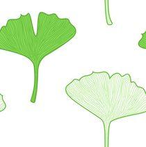 gingko bio leaves by Jana Guothova