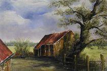 In Drenthe von lia-van-elffenbrinck