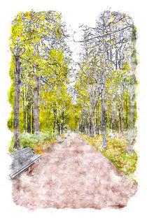 Autumn Alley by cinema4design