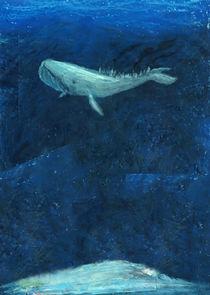 Whale by Irene Cavalchini