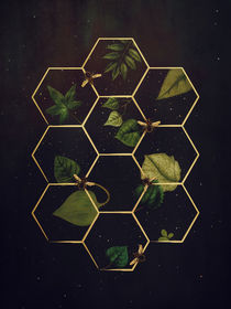 Bees in Space von Sybille Sterk