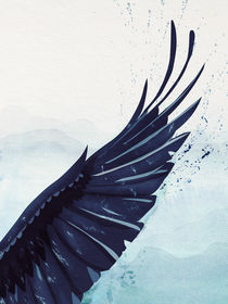 Feathers and Wings: Raven's Wing von Sybille Sterk