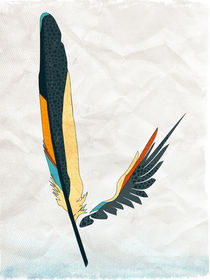 Feathers and Wings: Coloured feather and wing von Sybille Sterk