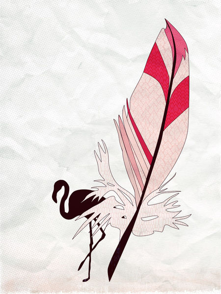 Feathers-flamingo-c-sybillesterk