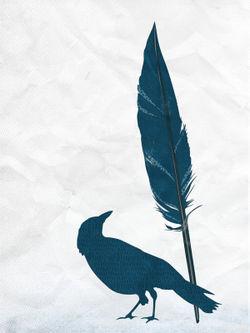 Feathers-raven-c-sybillesterk
