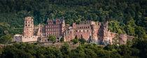 Heidelberger Schloss by Stephan Hockenmaier