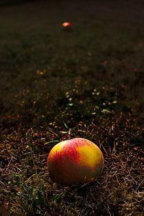Apfel von mario-s