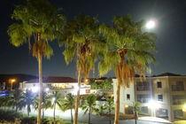 Night in Curaçao by Talita Muniz