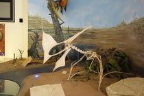 Dinosaur 4 by Talita Muniz