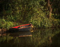 Dinghy On The Oxford Canal von Ian Lewis