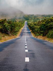Road Trip by Alexander Dorn