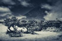 Dunkle Atmosphäre by Alexander Dorn