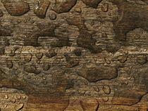 Planke und Regenwasser by dresdner