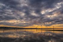 Wolkenverhangener Morgen auf der Halbinsel Höri bei Moos - Bodensee von Christine Horn