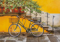 Bicycle Parked at Wall, Lucca, Italy von Daniel Ferreira Leites Ciccarino