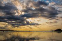 Goldenes Morgenlicht über dem Bodensee auf der Halbinsel Höri by Christine Horn