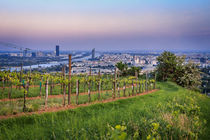 View over Danube in Vienna from the vineyards in Nussdorf von Silvia Eder