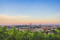 View over Danube in Vienna from the vineyards by Silvia Eder
