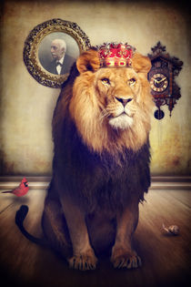 The royal Lion by AD DESIGN Photo + PhotoArt
