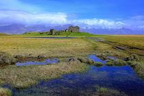 Island im Grün von Patrick Lohmüller