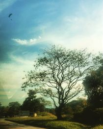 wind-surfing by Talita Muniz