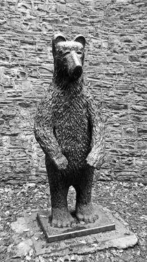 SHEFFIELD. The Botanical Gardens Bear. by Lachlan Main