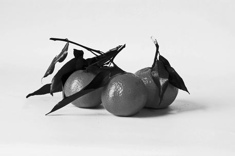 11-01-13-studio-a-group-of-three-clementines