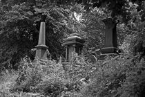 SHEFFIELD. The General Cemetery. Three Tombs. by Lachlan Main