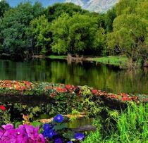 Paisaje con flores von Ricardo De Luca