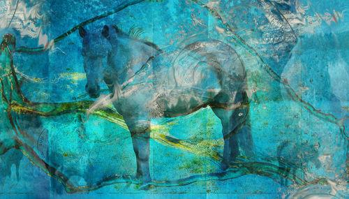 Kristinnorn-bluehorse-7800x4400