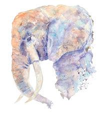 Elephant von Sveta Hubmann