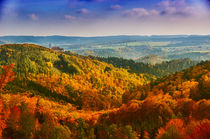 Autumn in Lower Austria by Harald Dotter