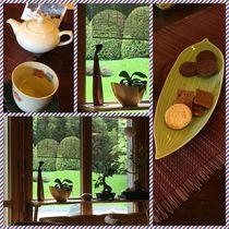 TEA Happiness by Monika Mariotti