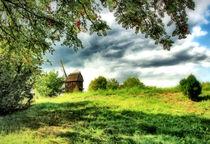 Eberesche mit Bockwindmühle by garrulus-glandarius